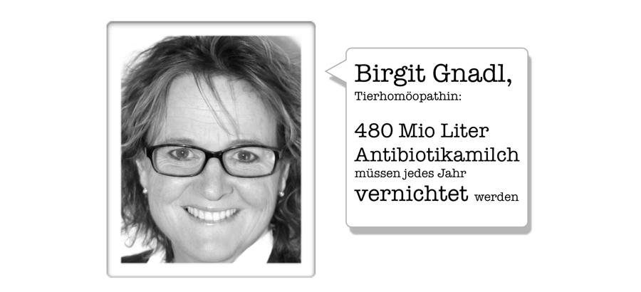 80% der Antibiotika könnten mit Homöopathie eingespart werden / Interview mit Birgit Gnadl, der bekannten Expertin für Tierhomöopathie - Blog zu Homöopathie