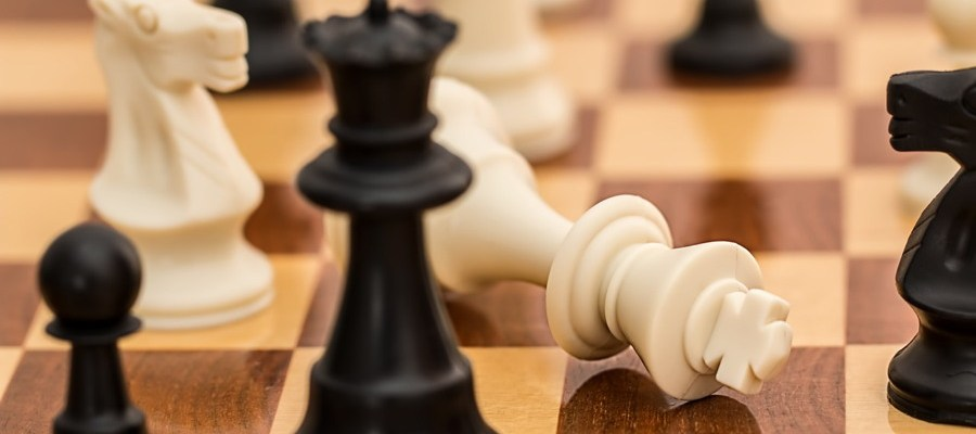 schach-homoepathie-verband