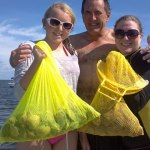 homosassa scalloping 2012