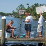 Homosassa scallop cleaning