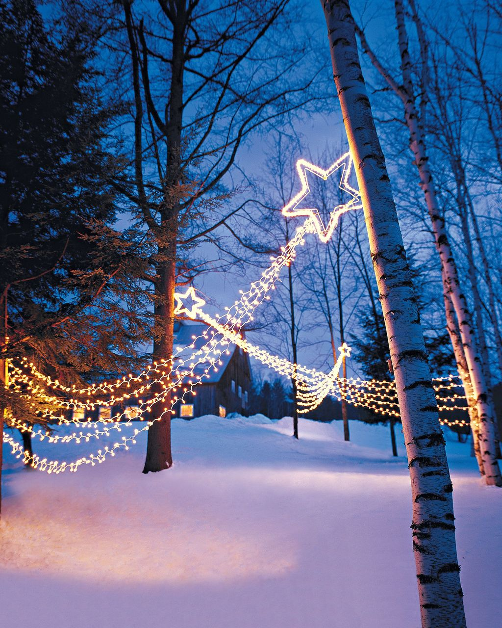 Beautiful Winter Wonderland Lighting Ideas For Outdoor And Indoor Decor 10