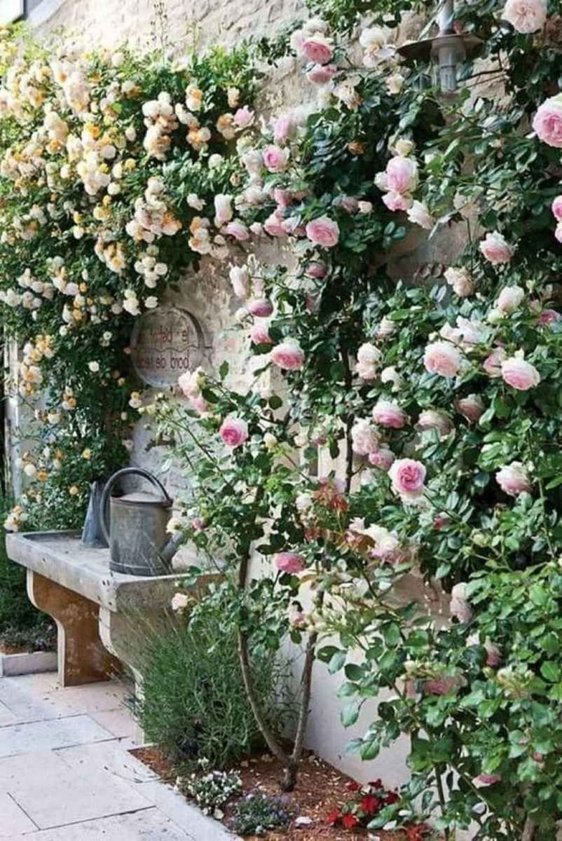 Lovely Flower Garden Design Ideas To Beautify Your Outdoor 02