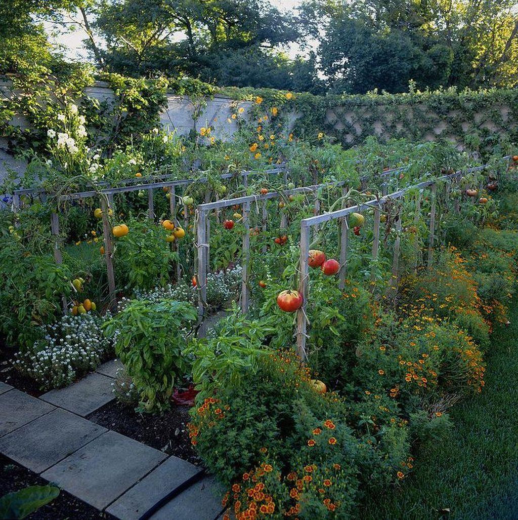 Beautiful Garden Design Ideas On A Budget 24