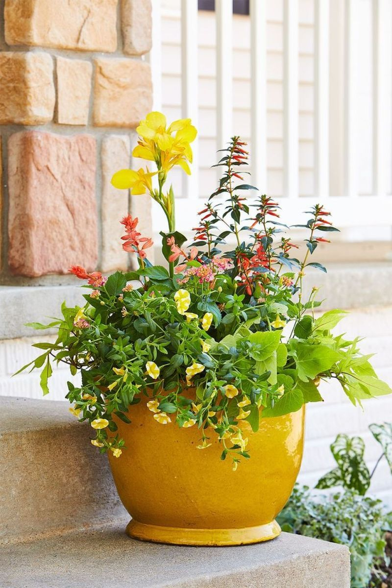 Lovely Combination Planting Container Gardening Ideas 13