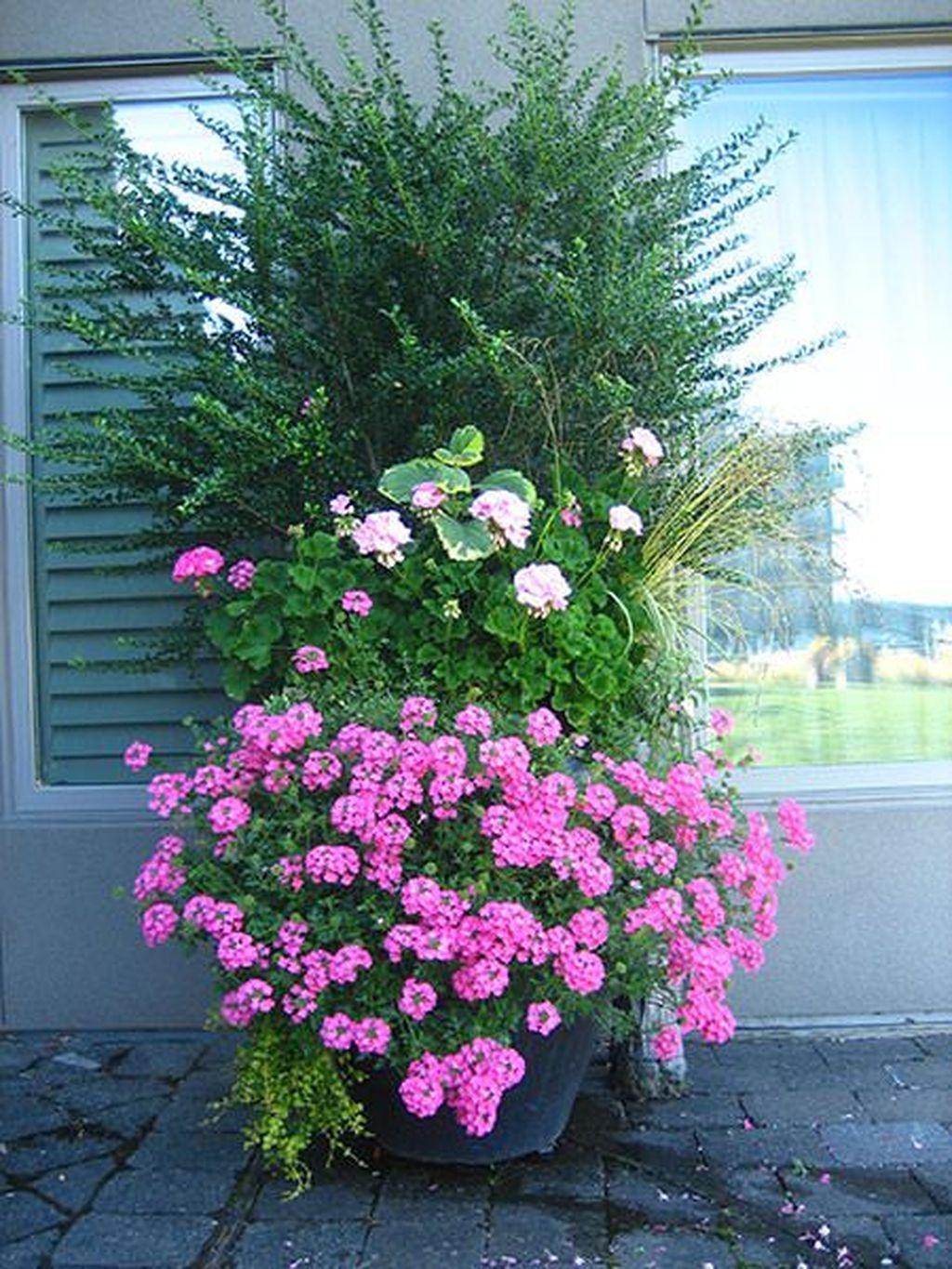 Lovely Combination Planting Container Gardening Ideas 30