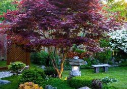Awesome Japanese Garden Design Ideas 32
