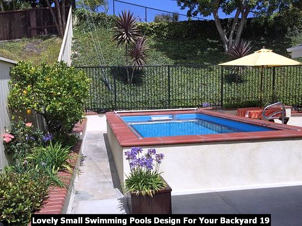 Lovely Small Swimming Pools Design For Your Backyard 19
