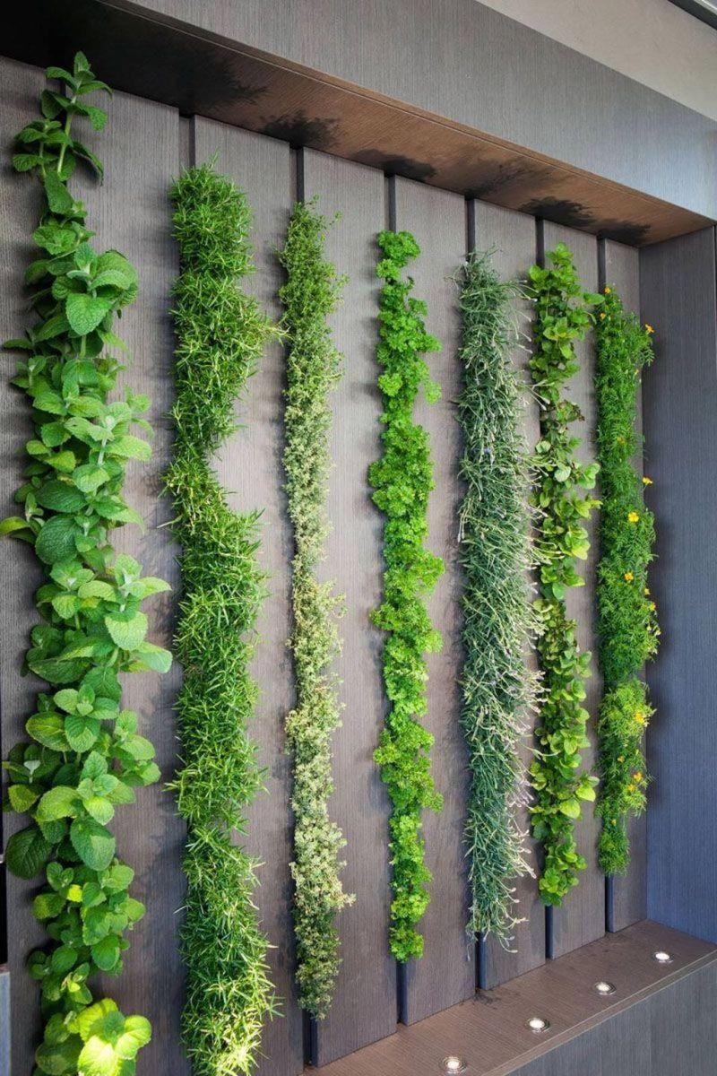 Nice Vertical Garden Wall Decor Ideas Look Beautiful 38