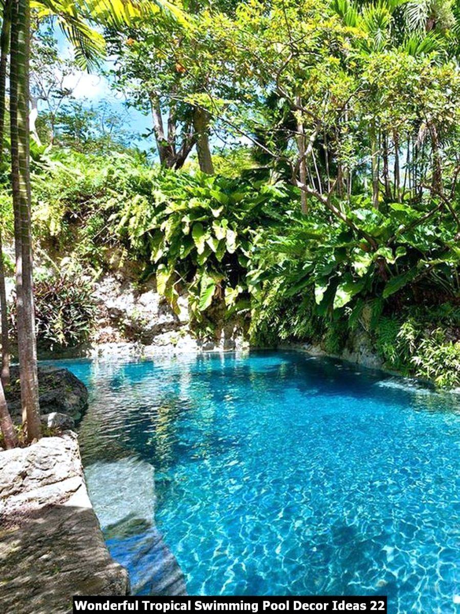 Wonderful Tropical Swimming Pool Decor Ideas 22