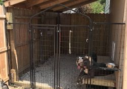 Outdoor Dog Kennel Ideas