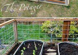 Outdoor Vegetable Garden Ideas