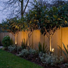 Captivating Fence Design Ideas That You Can Try 03
