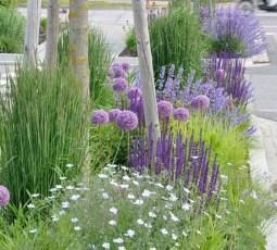 Pretty Frontyard Landscaping Design Ideas 44