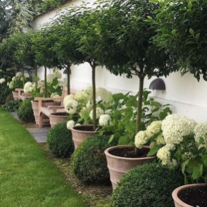 Amazing Backyard Landscaping Design Ideas On A Budget 25