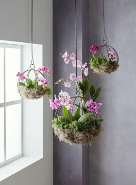 Extraordinary Indoor Garden Design And Remodel Ideas For Apartment 09
