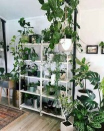 Extraordinary Indoor Garden Design And Remodel Ideas For Apartment 50