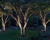 Marvelous Garden Lighting Design Ideas 48