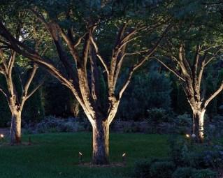 Marvelous Garden Lighting Design Ideas 48