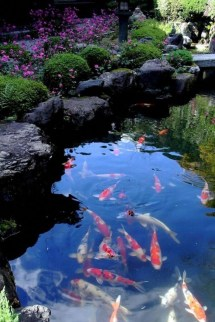 Cool Fish Pond Garden Landscaping Ideas For Backyard 07