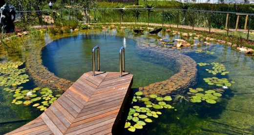 Top Natural Small Pool Design Ideas To Copy Asap 14