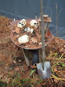 Elegant Outdoor Halloween Decoration Ideas 20