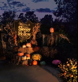 Elegant Outdoor Halloween Decoration Ideas 21