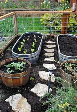 Exciting Ideas To Grow Veggies In Your Garden 02