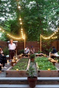 Exciting Ideas To Grow Veggies In Your Garden 32