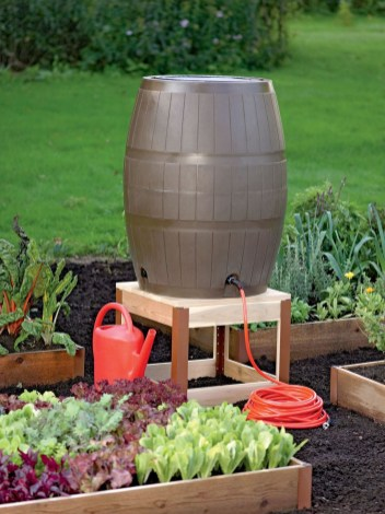 Exciting Ideas To Grow Veggies In Your Garden 36