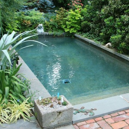 Popular Small Swimming Pool Design On A Budget 29