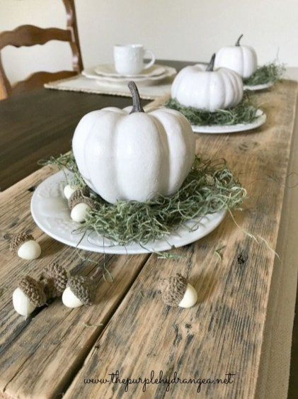 Simple Fall Table Decoration Ideas 54