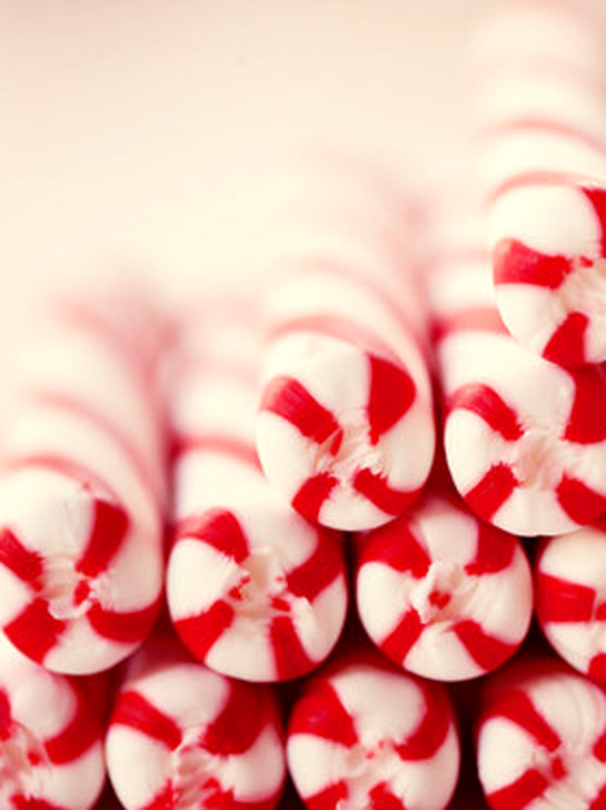 Fun Candy Cane Christmas Decoration Ideas 11