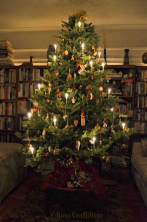 Charming Traditional Christmas Tree Decor Ideas 16