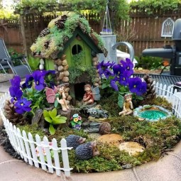 Pretty Fairy Garden Plants Ideas For Around Your Side Home 32