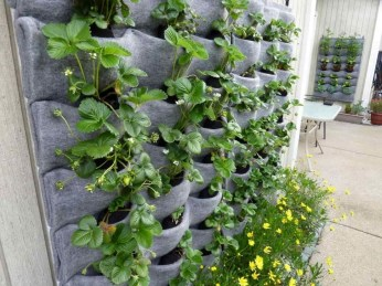 Beautiful Hanging Planter Ideas For Outdoor 18