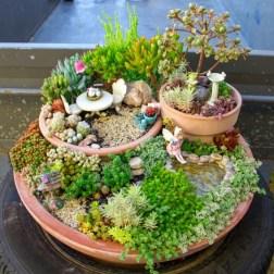 Brilliant DIY Fairy Garden Design Ideas 05
