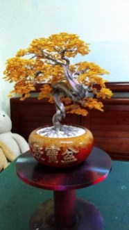 Inspiring Bonsai Tree Ideas For Your Garden 02