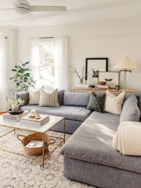 Easy And Simple Neutral Living Room Design Ideas 28