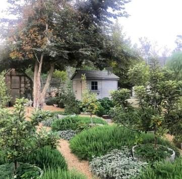 Romantic Backyard Garden Ideas You Should Try 34