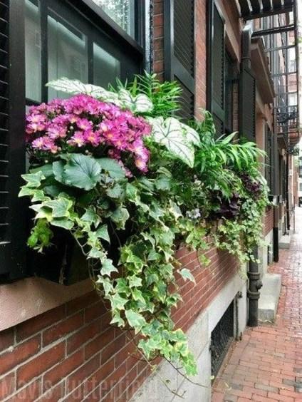 Wonderful Window Box Planters Yo Beautify Up Your Home 14