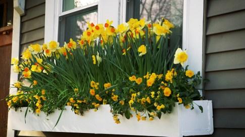 Wonderful Window Box Planters Yo Beautify Up Your Home 40