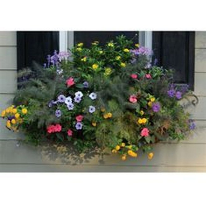 Wonderful Window Box Planters Yo Beautify Up Your Home 49