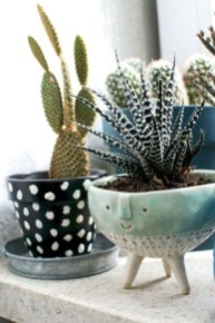 Cool Small Cactus Ideas For Home Decoration 17