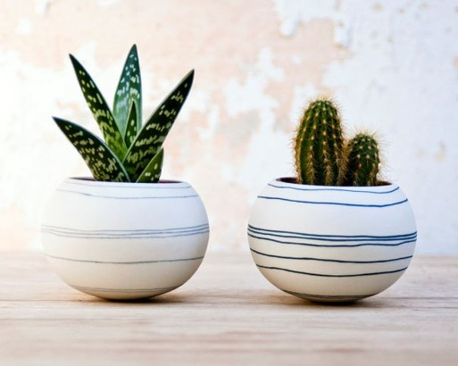 Cool Small Cactus Ideas For Home Decoration 28
