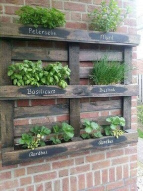 Genius DIY Projects Pallet For Garden Design Ideas 35