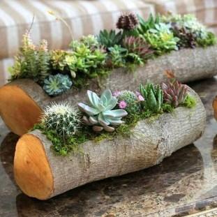 Best Ideas For Garden Succulent Landscaping 04