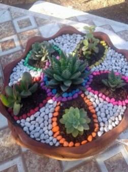 Best Ideas For Garden Succulent Landscaping 17