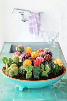 Best Ideas For Garden Succulent Landscaping 40