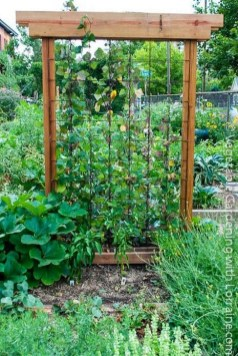 Stunning DIY Garden Bed To Beautify Your Backyard 41