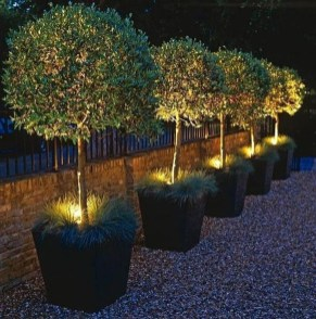 Astonishing Outdoor Lights For Decorating Backyards In Summer 16